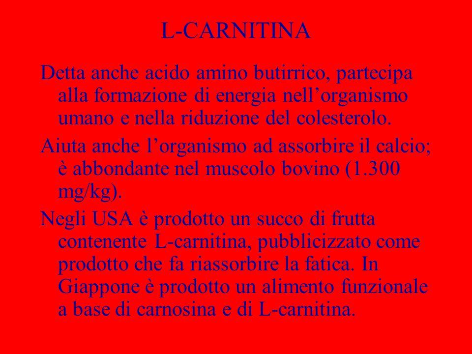 L-CARNITINA Detta anche acido amino butirrico, partecipa alla formazione di energia nell'organismo umano e nella riduzione del colesterolo.