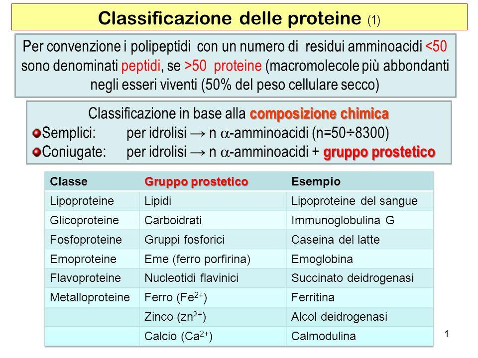 Classificazione delle proteine (1)