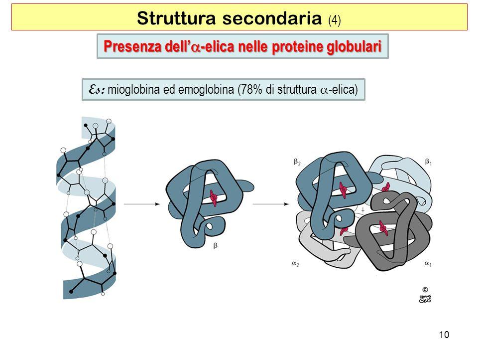 Presenza dell'a-elica nelle proteine globulari