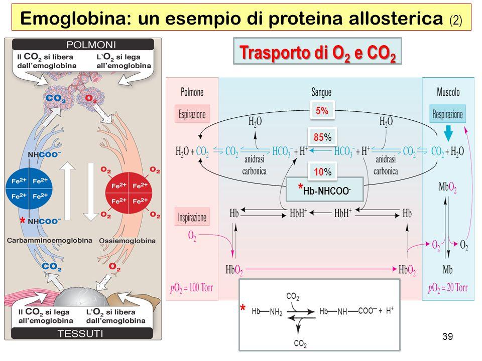 Emoglobina: un esempio di proteina allosterica (2)