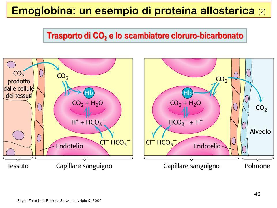 Trasporto di CO2 e lo scambiatore cloruro-bicarbonato