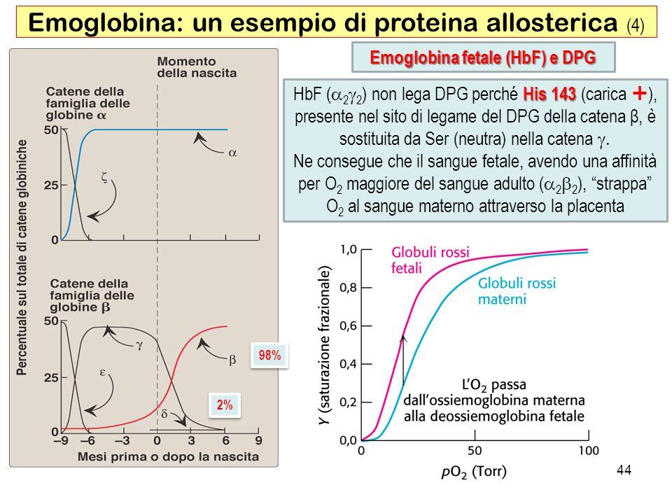 Emoglobina fetale (HbF) e DPG