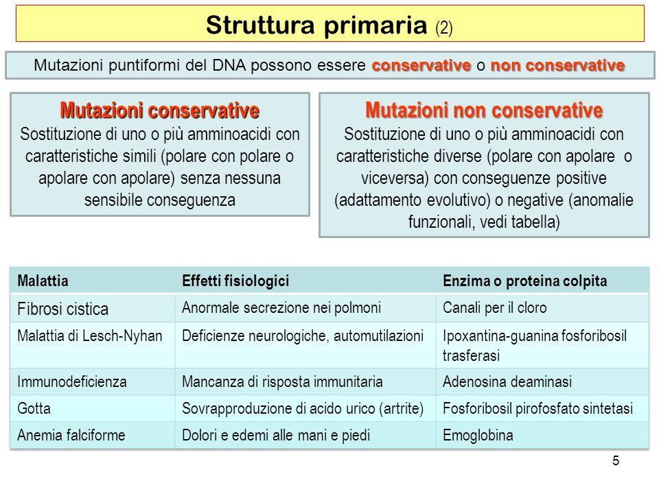Mutazioni conservative Mutazioni non conservative
