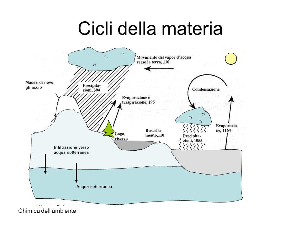 Cicli della materia Chimica dell ambiente