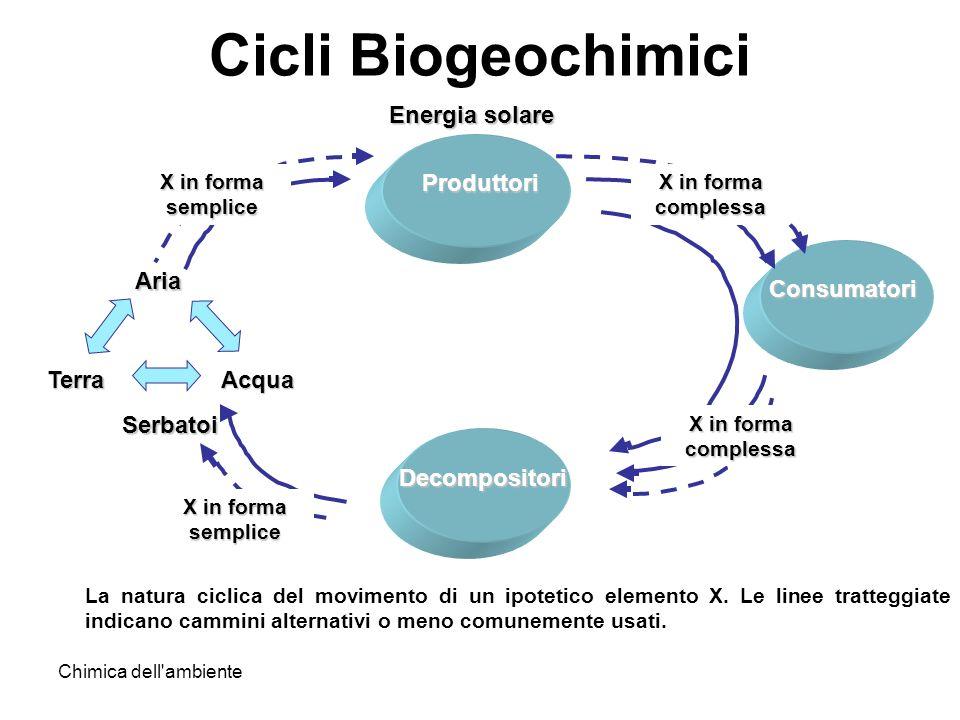 Cicli Biogeochimici Produttori Consumatori Decompositori