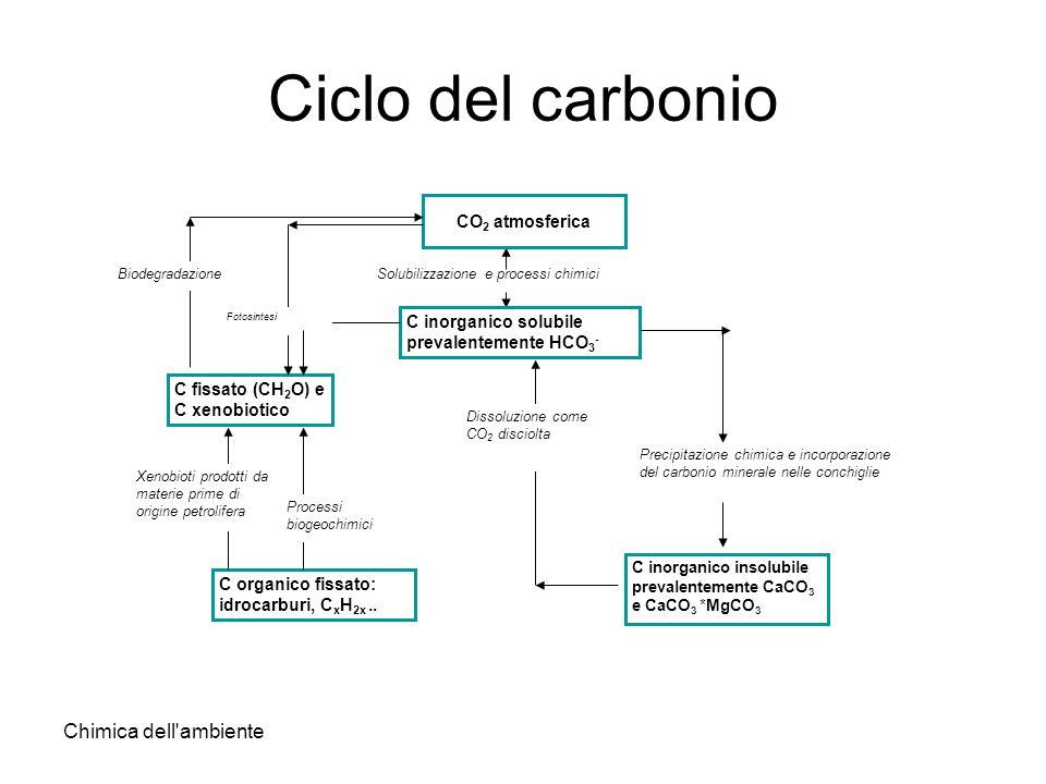 Ciclo del carbonio Chimica dell ambiente CO2 atmosferica