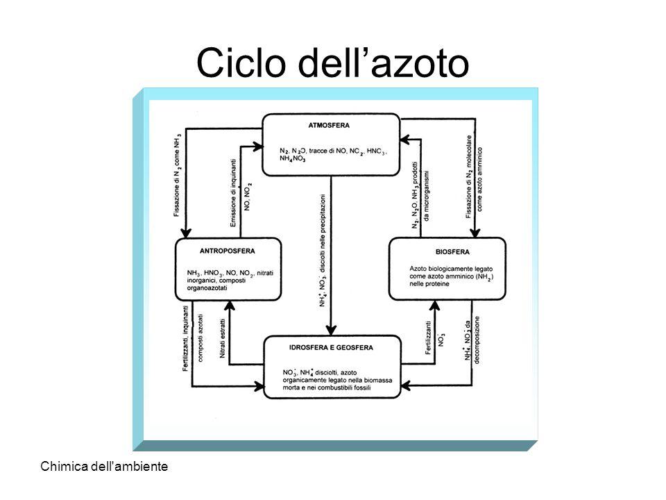 Ciclo dell'azoto Chimica dell ambiente