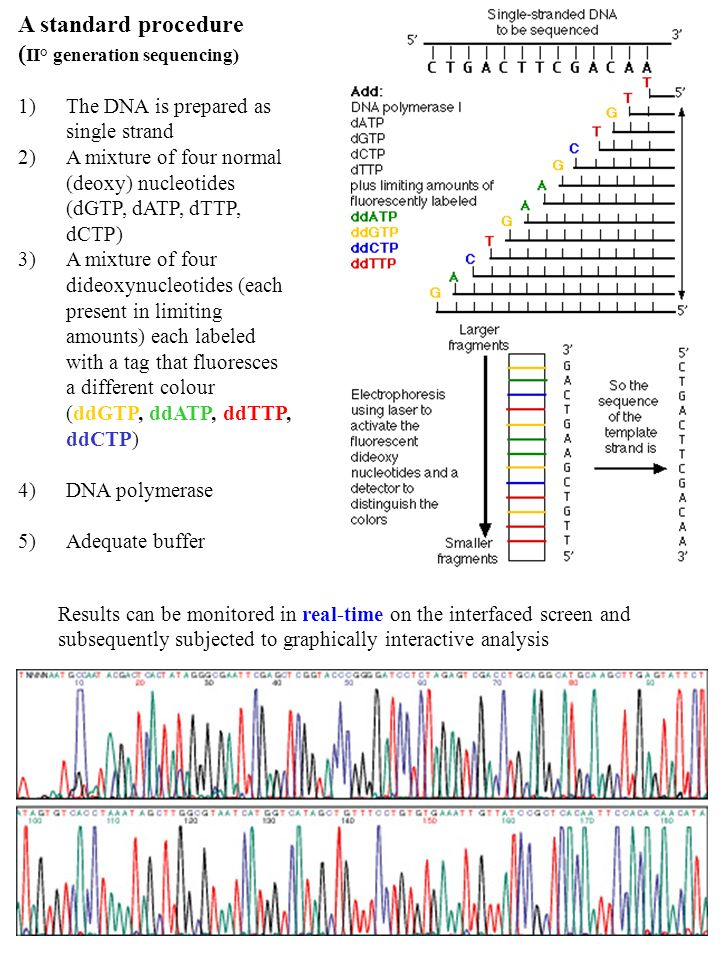 (II° generation sequencing)