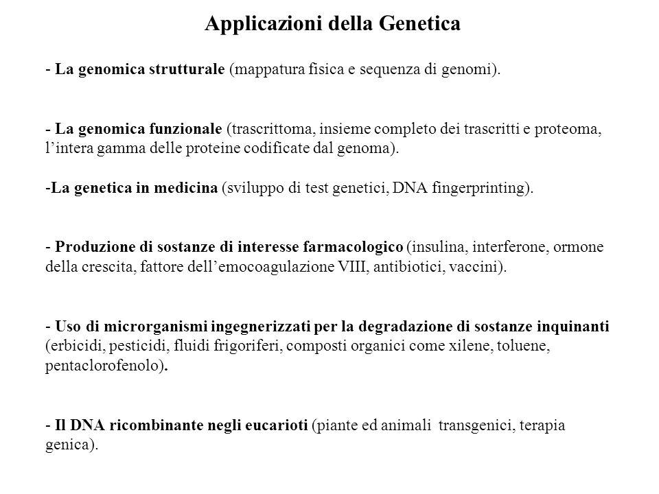 Applicazioni della Genetica