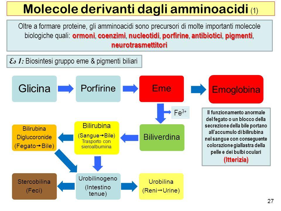 Molecole derivanti dagli amminoacidi (1)
