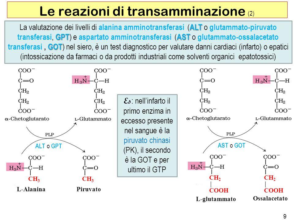 Le reazioni di transamminazione (2)