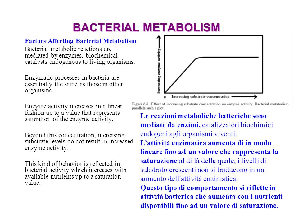 BACTERIAL METABOLISM Factors Affecting Bacterial Metabolism.