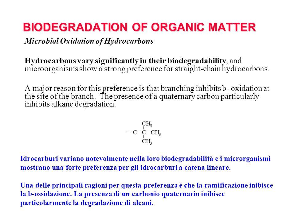 BIODEGRADATION OF ORGANIC MATTER