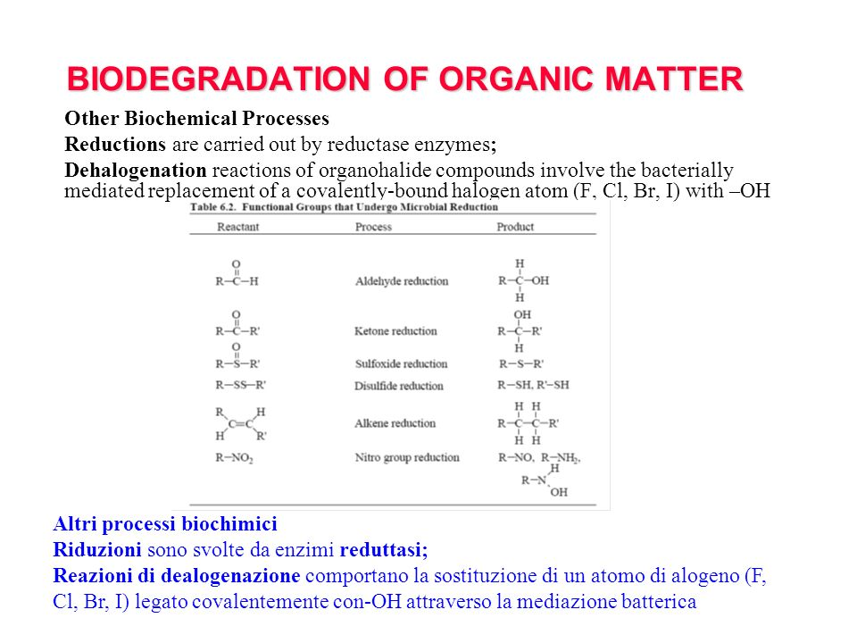 BIODEGRADATION OF ORGANIC MATTER