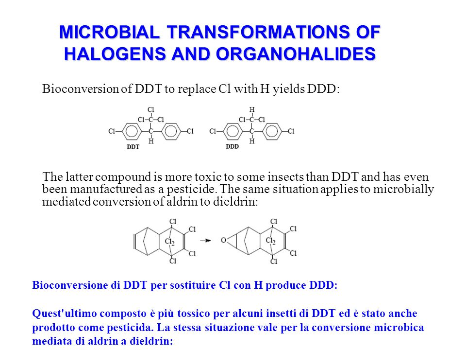 MICROBIAL TRANSFORMATIONS OF HALOGENS AND ORGANOHALIDES