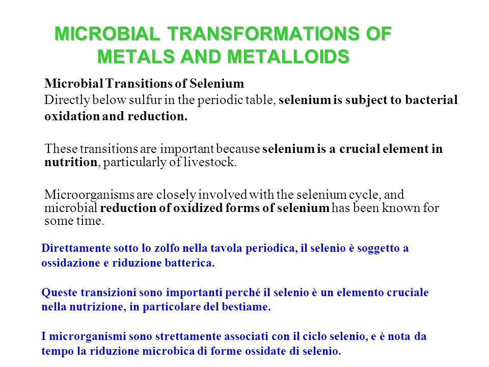 MICROBIAL TRANSFORMATIONS OF METALS AND METALLOIDS