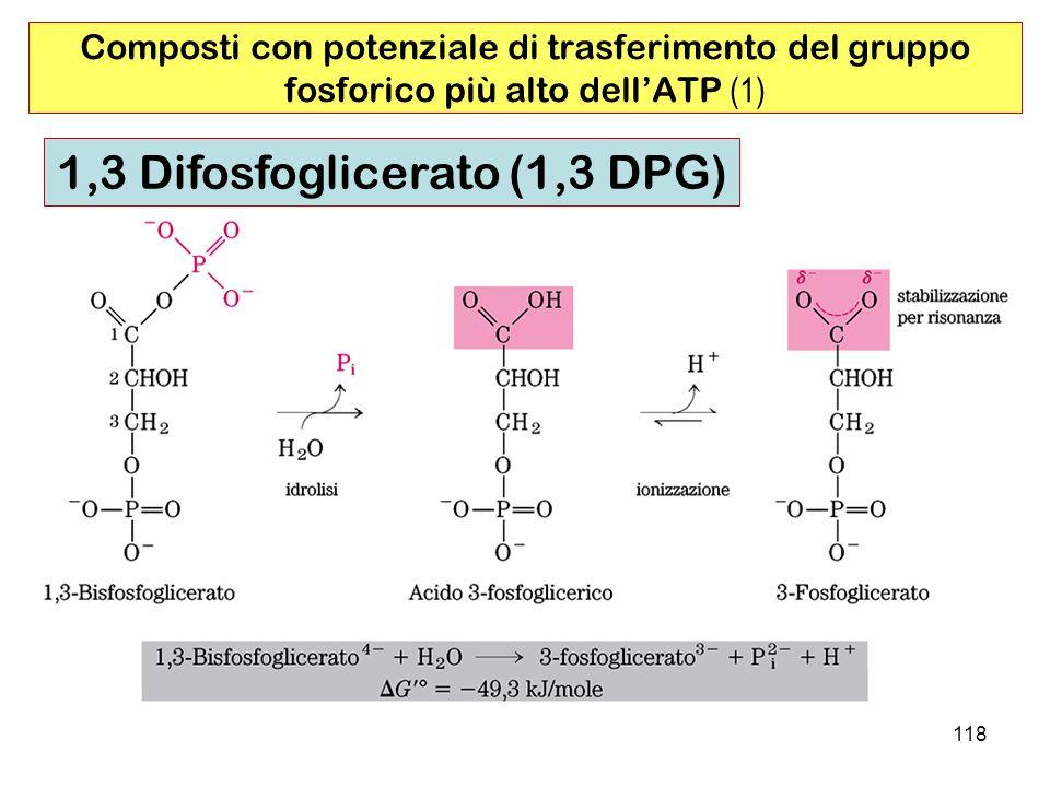 1,3 Difosfoglicerato (1,3 DPG)