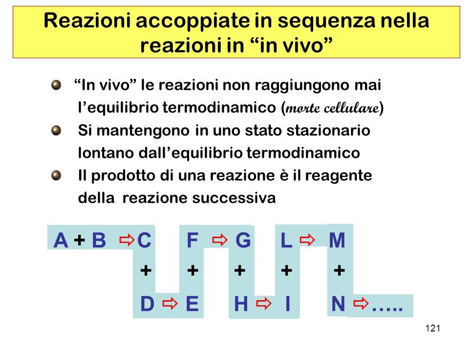 Reazioni accoppiate in sequenza nella reazioni in in vivo