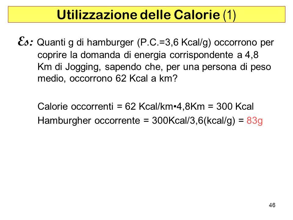 Utilizzazione delle Calorie (1)