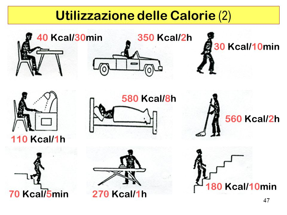 Utilizzazione delle Calorie (2)
