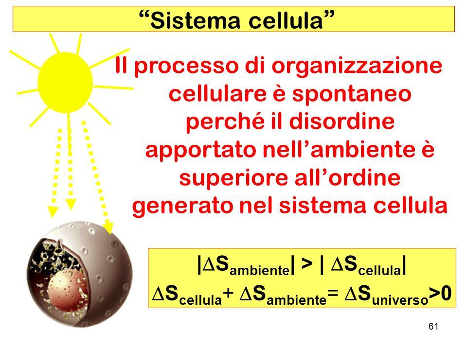 |DSambiente| > | DScellula|