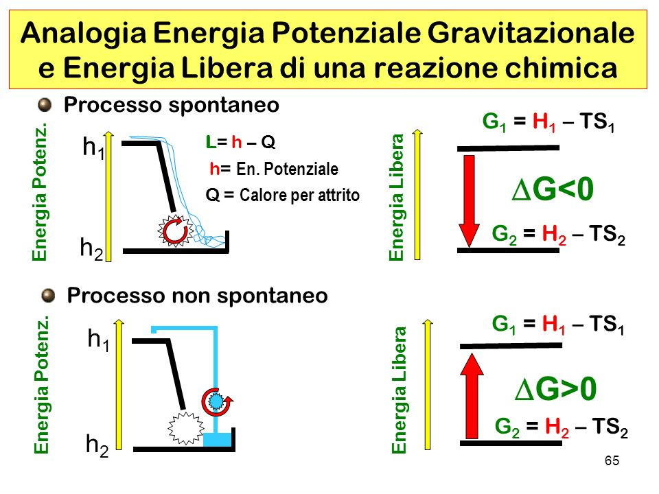 Analogia Energia Potenziale Gravitazionale e Energia Libera di una reazione chimica