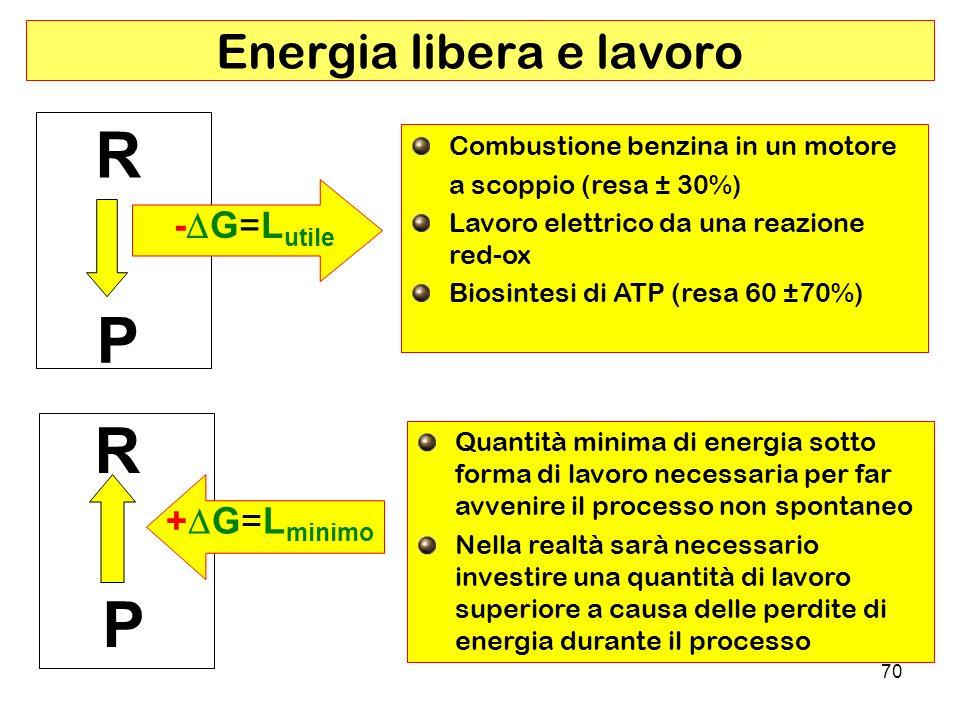 Energia libera e lavoro