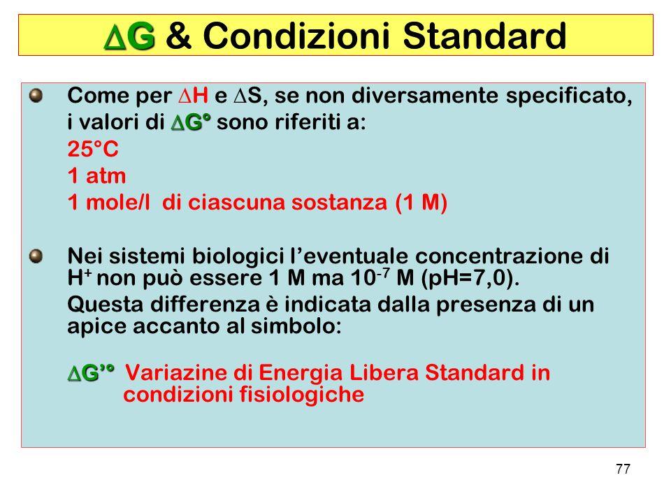 DG & Condizioni Standard