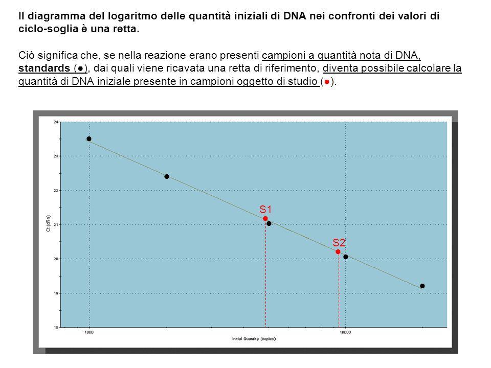 Il diagramma del logaritmo delle quantità iniziali di DNA nei confronti dei valori di