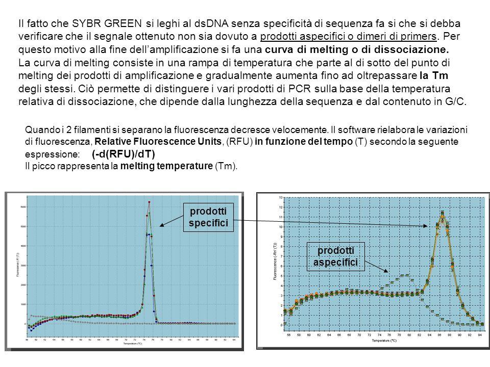 Il fatto che SYBR GREEN si leghi al dsDNA senza specificità di sequenza fa si che si debba verificare che il segnale ottenuto non sia dovuto a prodotti aspecifici o dimeri di primers. Per questo motivo alla fine dell'amplificazione si fa una curva di melting o di dissociazione.
