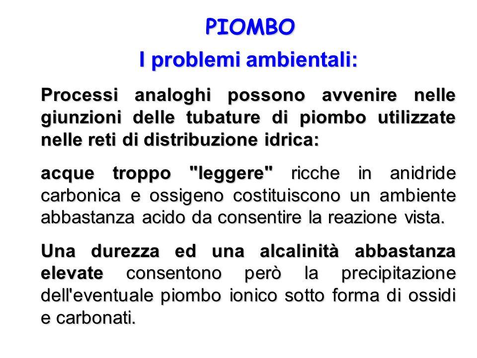 I problemi ambientali: