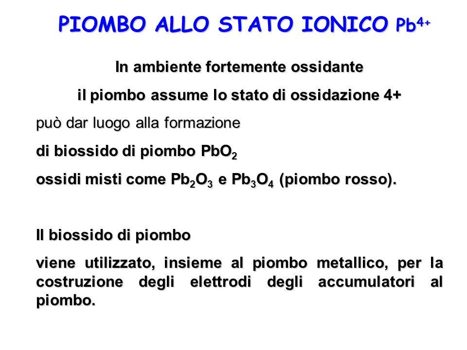 PIOMBO ALLO STATO IONICO Pb4+