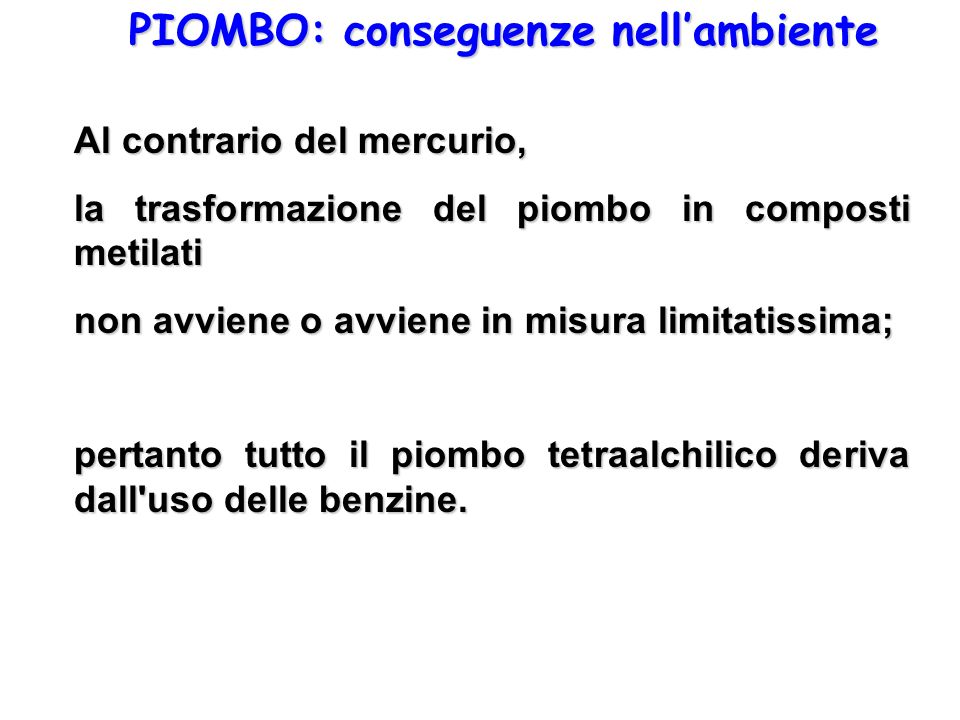 PIOMBO: conseguenze nell'ambiente