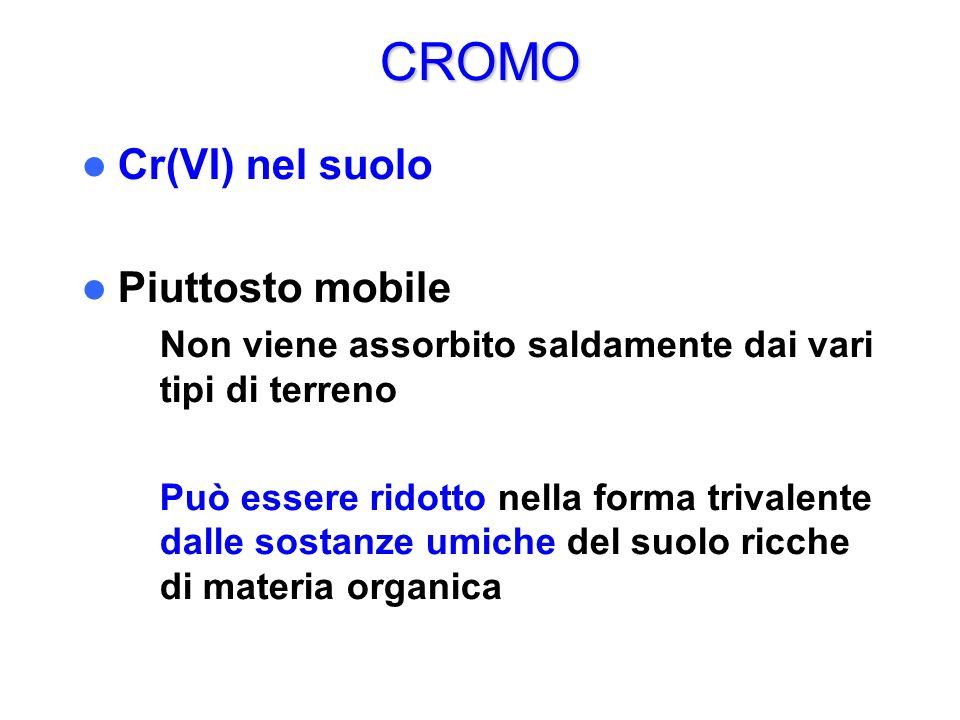 CROMO Cr(VI) nel suolo Piuttosto mobile
