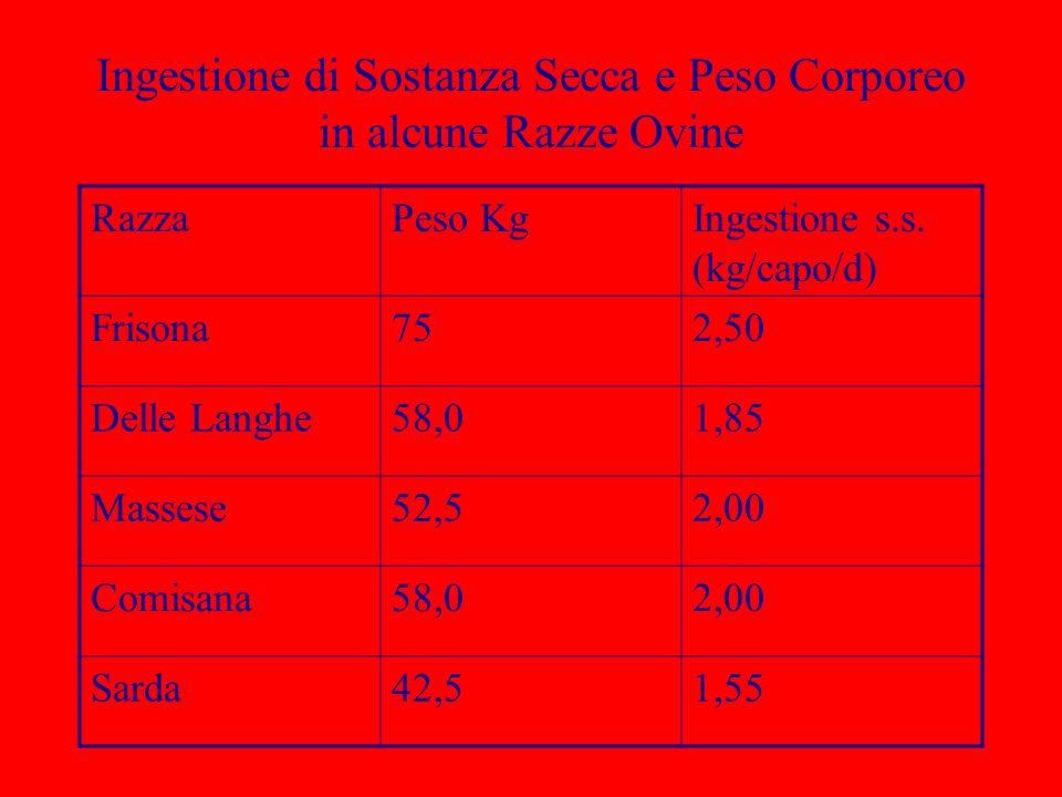Ingestione di Sostanza Secca e Peso Corporeo in alcune Razze Ovine