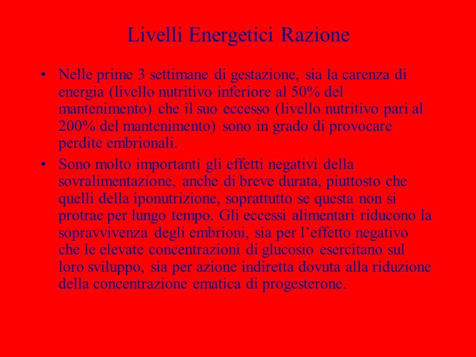 Livelli Energetici Razione
