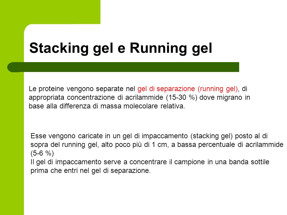Stacking gel e Running gel