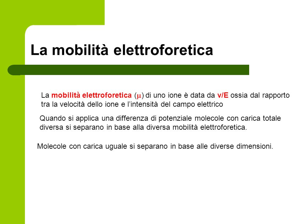 La mobilità elettroforetica