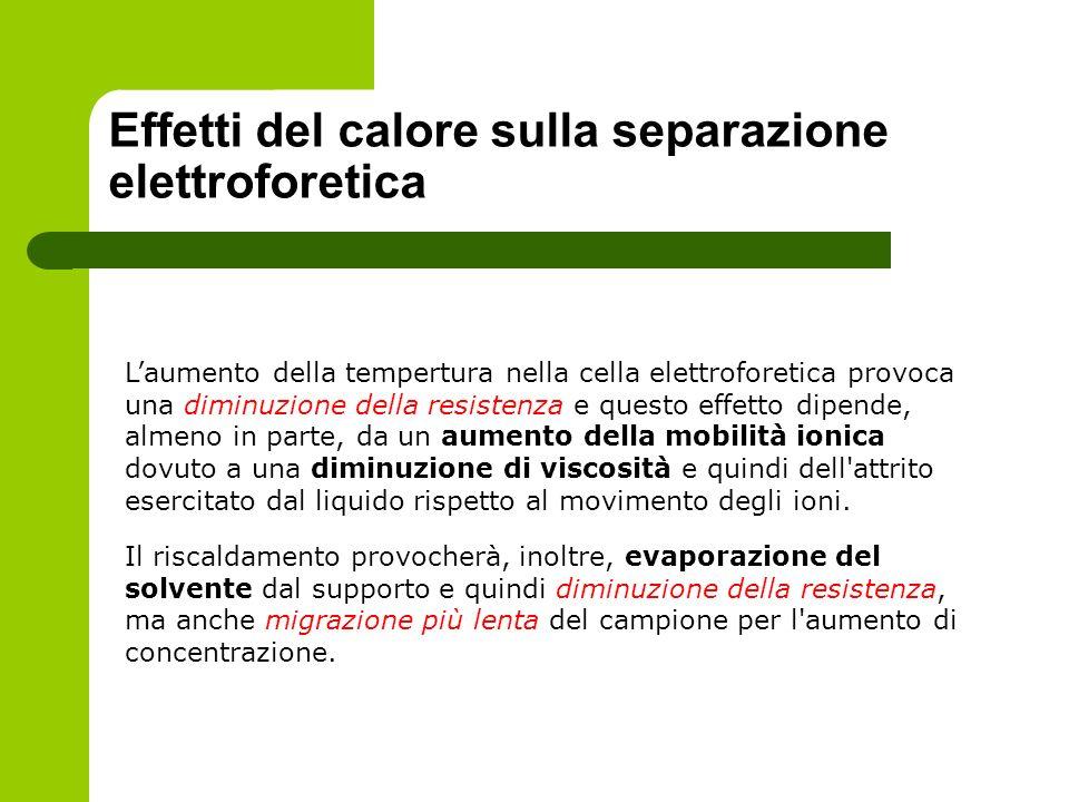Effetti del calore sulla separazione elettroforetica