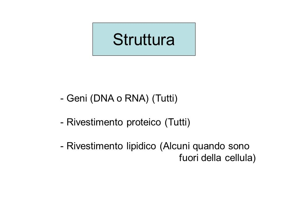 Struttura Geni (DNA o RNA) (Tutti) Rivestimento proteico (Tutti)