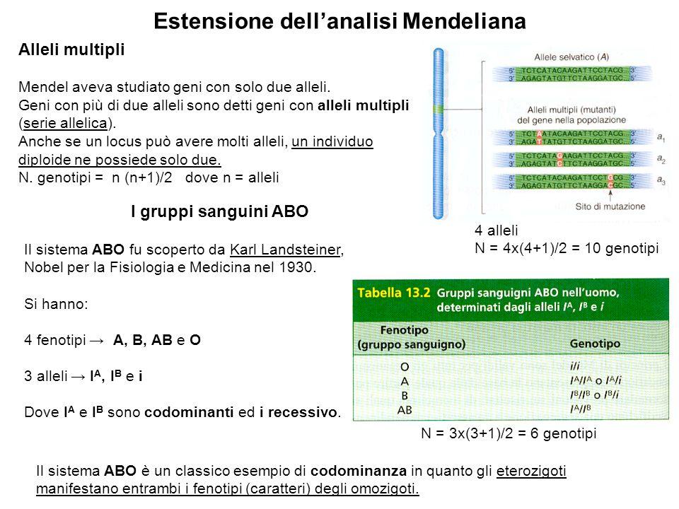 Estensione dell'analisi Mendeliana