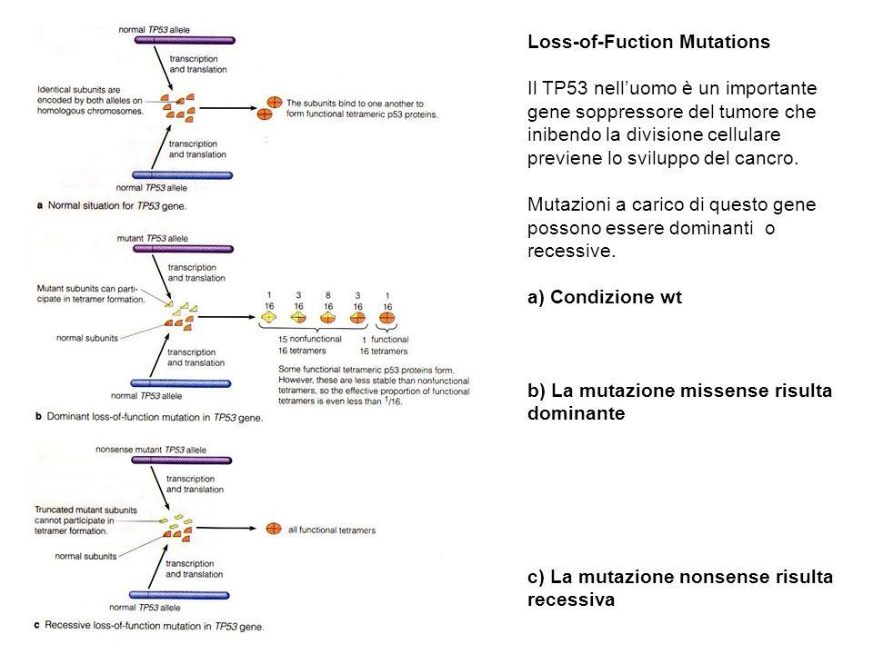 Loss-of-Fuction Mutations