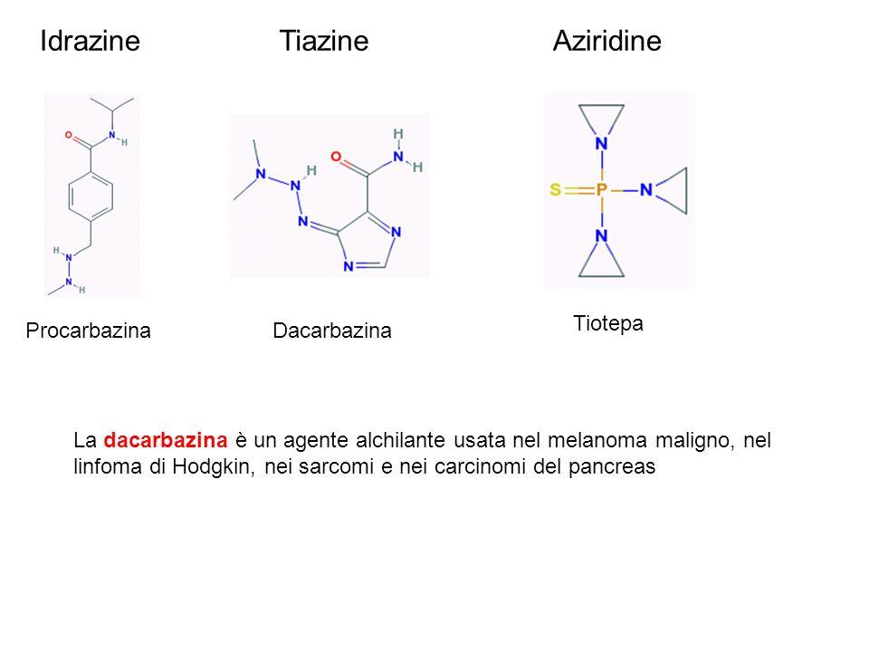 Idrazine Tiazine Aziridine Tiotepa Procarbazina Dacarbazina