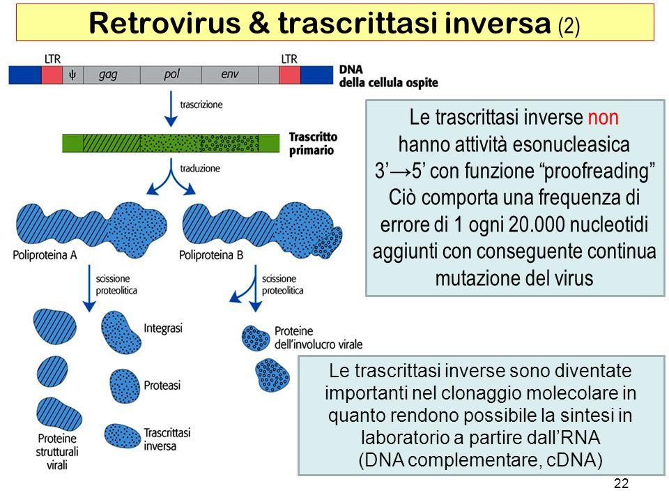 Retrovirus & trascrittasi inversa (2)