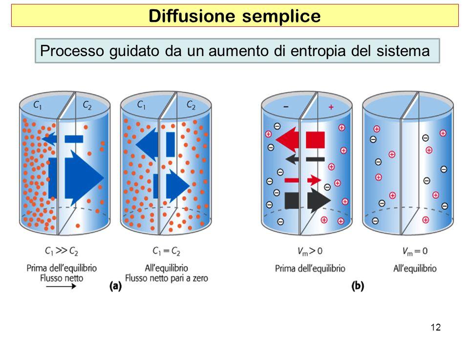 Diffusione semplice Processo guidato da un aumento di entropia del sistema
