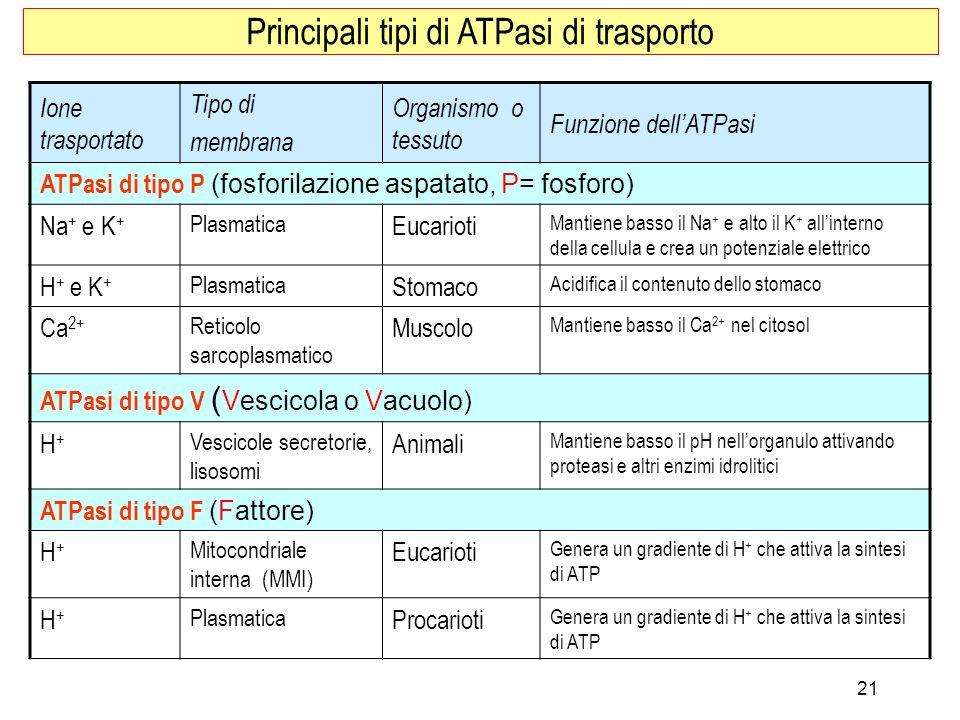 Principali tipi di ATPasi di trasporto