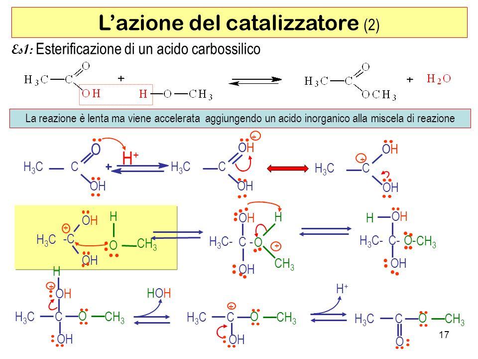 L'azione del catalizzatore (2)