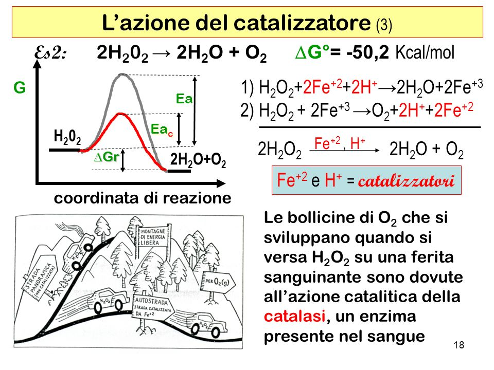 L'azione del catalizzatore (3)
