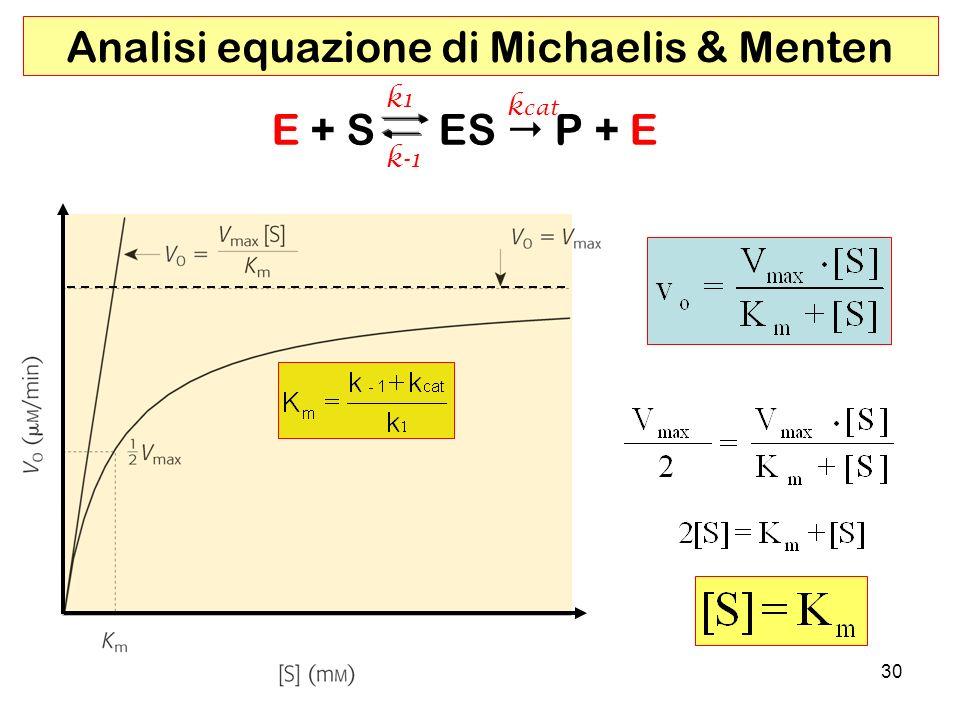 Analisi equazione di Michaelis & Menten