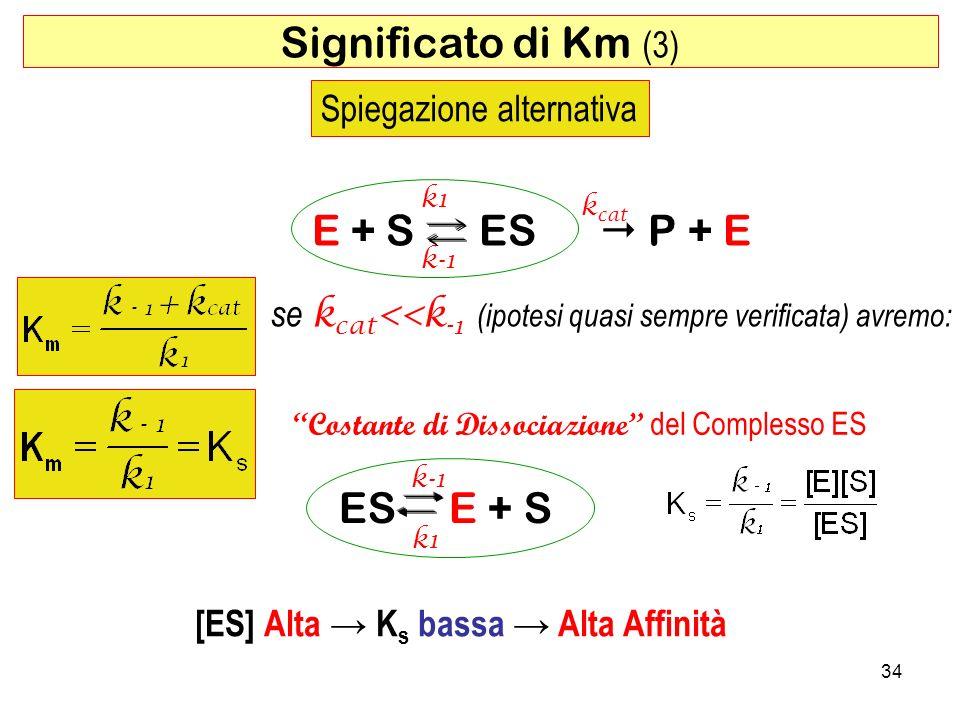 Significato di Km (3) E + S ES  P + E ES E + S